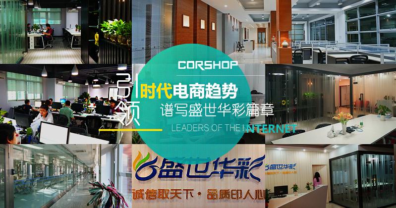 商城网站建设领导品牌